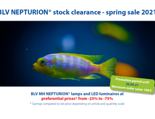 BLV NEPTURION® Stock clearance – spring sale 2021