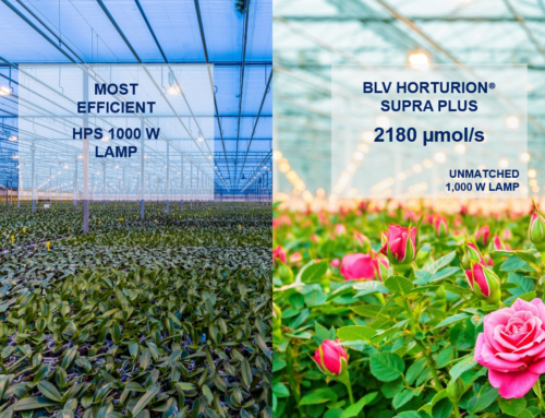 Ushio Germany presents most efficient HPS 1000 W  lamp with 2 180 µmol/s